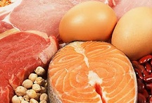Function of Protein in the Body