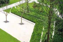 Grön stad & park