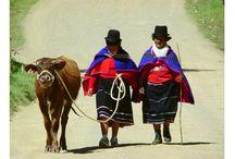 mi tribu a trabajar