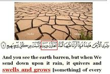 miracle of islam