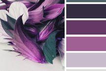 Color Inspirations / Kombinace barev