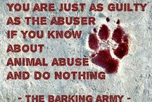 fight for animal rights