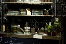 shop displays / by Rita Cupano