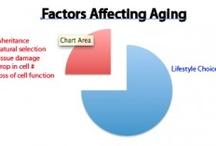Aging and Longevity