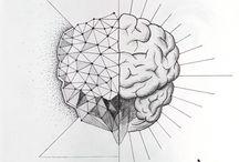 Brain & Neurosciences