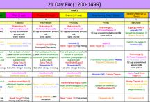 Portion Control Meal Plans / Clean Eating Meal Plans- 21 Day Fix, PiYo, Insanity Max 30, Hammer and Chisel, CIZE