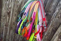 Futóöv / Running Belt / http://www.colorfundogs.hu/colorfun4ub/futoov