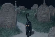 Halloween / by Caroline Lifshey