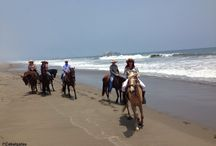 Cabalgatas en Lurin, Lima / Paseos a caballo por el valle de Lurin y Pachacamac, la playa San Pedro y Mamacona con CABALGATAS http://cabalgataslima.blogspot.com