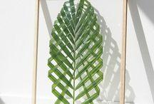 DIY : Un cadre végétal en Verre