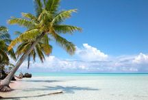 Tropical beaches / by Chris Voss
