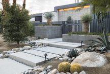 Palm Springs garden