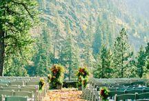boda montse i david