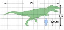 Aprendiendo más de dinosaurios / Curiosidades y fotos chulas sobre dinosaurios