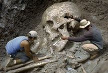 Giant Humans / Pictures of giant humans and giant human remains.