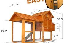 Fowl Play / all about the chicken coop