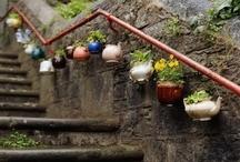 garden / garden inspiration / by VintageMixer