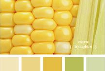 Color Schemes / by Kenzie Starr
