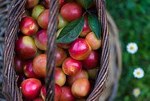 fruits n veggis