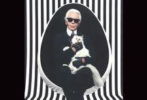 Studio Tim Campbell - Elizabeth Eakins - Choupette, Karl Largerfeld's cat