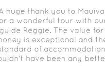 Mauiva on TripAdvisor  / See what our past AirCruisers had to say on Trip Advisor!