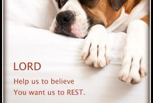 The Intangibles: Rest