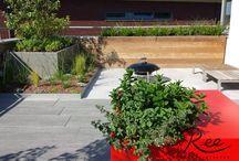 Design daktuin / Dit dakterras is voorzien van Zinco dakgroen producten in een niet gebruikelijke setting