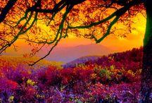 The Magnificent Splendor of God's Creation