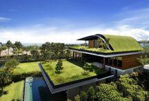 Inspiration {Eco-Friendly Architecture}