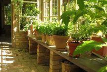 skleník/zimní zahrada