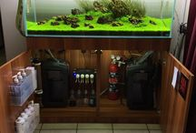 Aquatic and aquarium / Aquarium stuff, mats, fish, plants and such