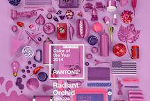 Color del año Pantone 2014 / El color Orquídea Radiante #radiatorchid #pantone #pantone2014