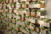 restaurant gardens