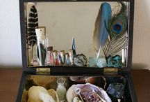 cabinet of curiosities / collections of precious artifacts to soothe my need for clutter and possessions