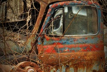 Just a little rusty / by Carolyn Fox
