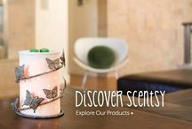 Scentsy Favourites / Safe scented candles