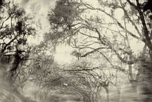 Sally Mann / Born 1951. American photographer, best known for her large black-and-white photographs—at first of her young children, then later of landscapes suggesting decay and death.
