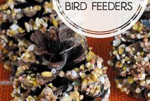 Homemade Bird Feeders. / Homemade bird feeders.  / by Stephanie Eberhart