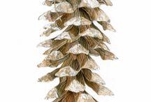 Композиция с одним предметом в ботанической живописи