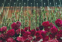 Breathtaking Flowers / The ultimate floral decor ideas for your special day.