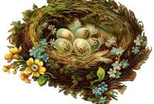 Рисуем гнездо