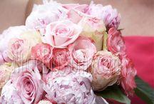 Bulk Roses and Wedding Flowers