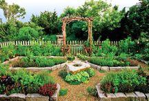Veggie garden ideas