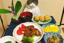 にゃん!のお食事。