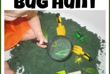 teaching/preK-1st/science/insects