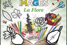 Arts visuels & Imagerie en classe maternelle / Des idées, des ressources, des activités pour (faire) mettre la main à la pâte, dessiner, colorier, peindre...