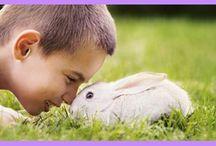 Kartki Wielkanocne / To się zajączek wielkanocny zdziwi! Zaskocz bliskich wysyłając kartki świąteczne z osobistymi życzeniami wielkanocnymi.