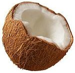 Coconut / by Paula Chappell