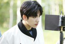 got7 Park jin young