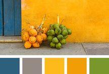 Farbenwelt / -in ihren unterschiedlichsten Facetten , Formen, Nuancen,...überall im Kleinem und im Großen -weil ich Farben in ihrer Vielfalt so sehr liebe